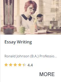Essay Writing Course